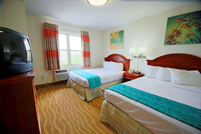 Recently renovated rooms blend warm tones and cool accents to invoke a pleasing atmosphere